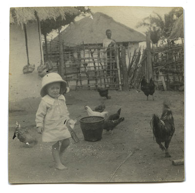 14-f-w-chickens-front